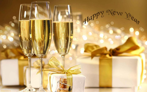 Pest Control Experts Happy New Year 2014