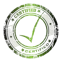 Certified Licensed Chaplin Termite Inspection