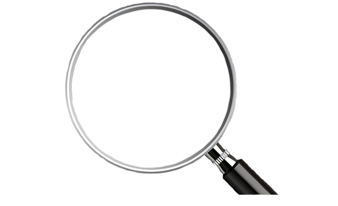 Pest Control East Hartford CT Magnifier
